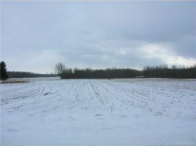 Photo of Steiner Rd, Newstead, NY 14001