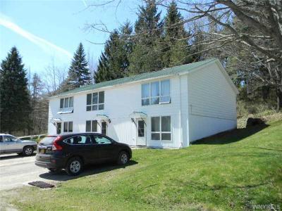 Photo of 6050-6062 Ashford Hollow Rd., Ashford, NY 14171
