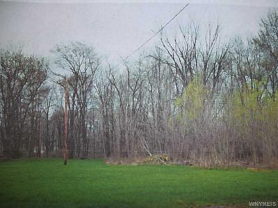 Photo of V/L Haussauer, Amherst, NY 14068