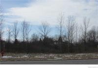 V/L Porter Rd South, Niagara, NY 14305