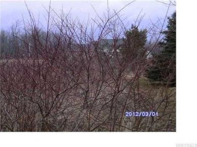 Photo of V/L Cedar Street, Newstead, NY 14001