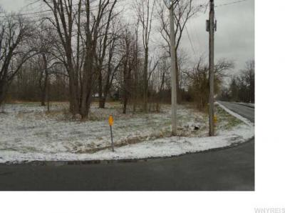 Photo of Ayers Road East, Newstead, NY 14001