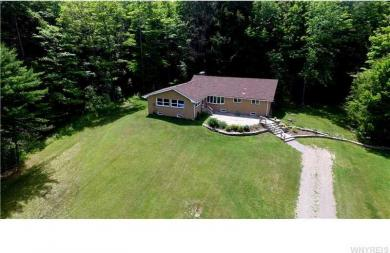 12507 Church Rd, Holland, NY 14080