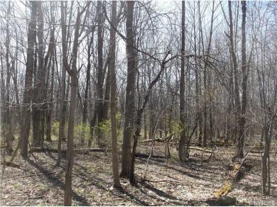 19 Deer Pond, Orangeville, NY 14569