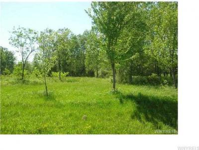 Photo of Maple Rd, Newstead, NY 14001