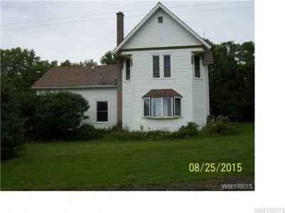 5104 Roszyk Hill, Ashford, NY 14171