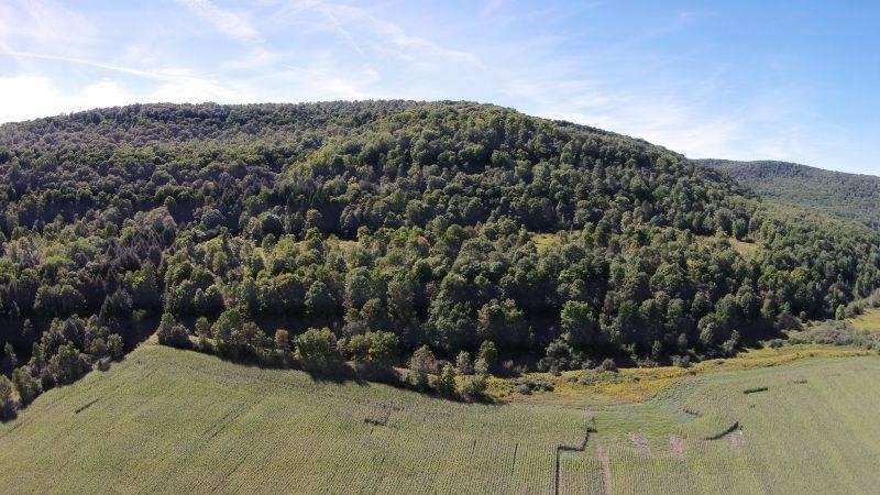 5719 Route 219, Great Valley, NY 14741