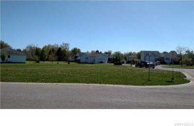 Photo of 4248 Scenic Drive, Lewiston, NY 14174