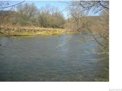5979 Route 16, Franklinville, NY 14743