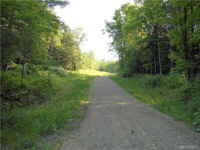 Photo of Haines Hollow Road, Great Valley, NY 14741