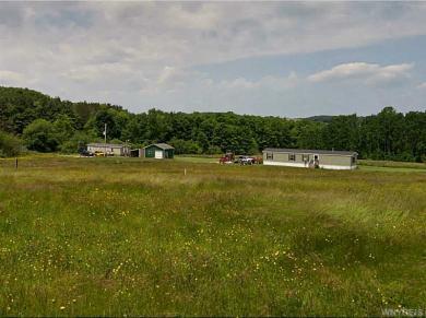 9182 Older Hill Road, Farmersville, NY 14737