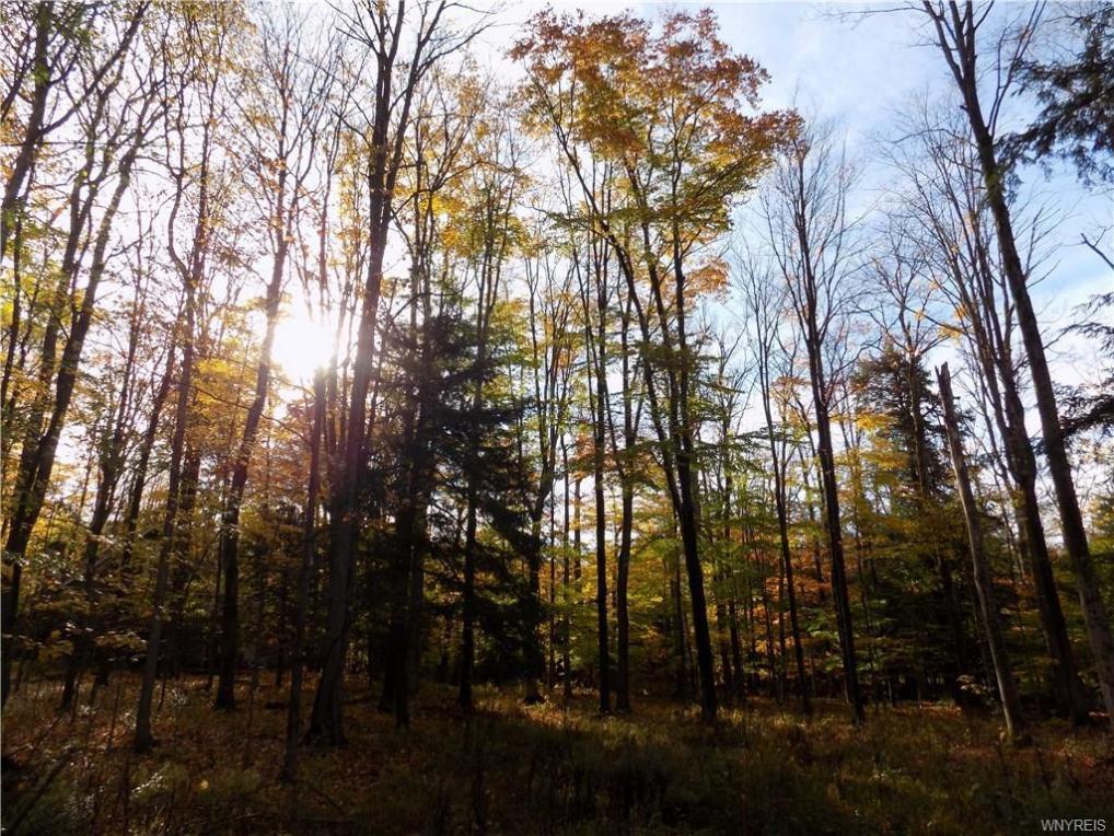 20 Woodstock Road, Concord, NY 14069