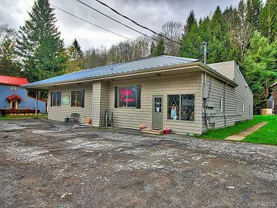 Photo of 32-34 W. Washington St, Ellicottville, NY 14731