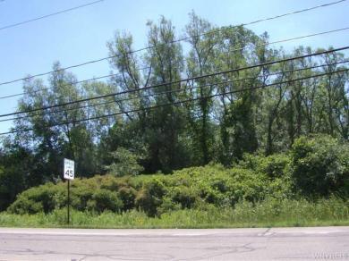 V/L Bedell Road South, Grand Island, NY 14072
