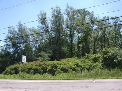 Photo of V/L Bedell Road South, Grand Island, NY 14072