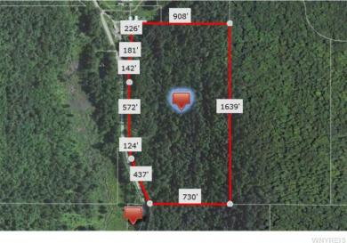 County Road 18 - Petrolia Rd - 32.5 Acres, Alma, NY 14708