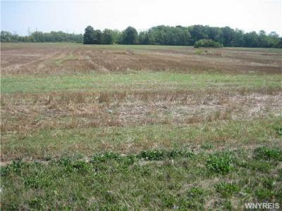 Photo of VL Walmore Rd (2 Acres), Lewiston, NY 14132