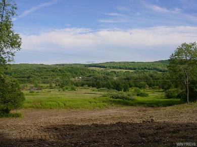 8519 Route 240, Ellicottville, NY 14731