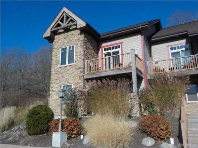 Photo of 1 Mountainview Upper, Ellicottville, NY 14731