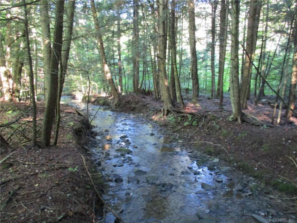 California Hollow, Bolivar, NY 14715