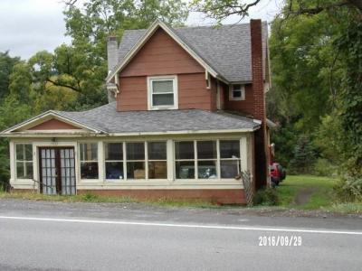 Photo of 7832 North Main Street, Springwater, NY 14560