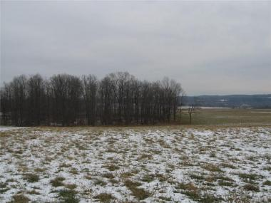 Federal Rd, Lot 1, Livonia, NY 14487