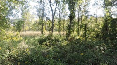 Photo of 00 Ridge Road, Murray, NY 14470