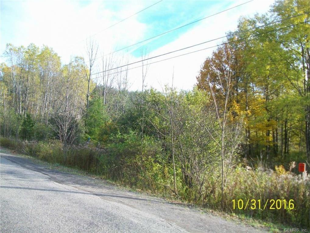 Moland Road, Alfred, NY 14803