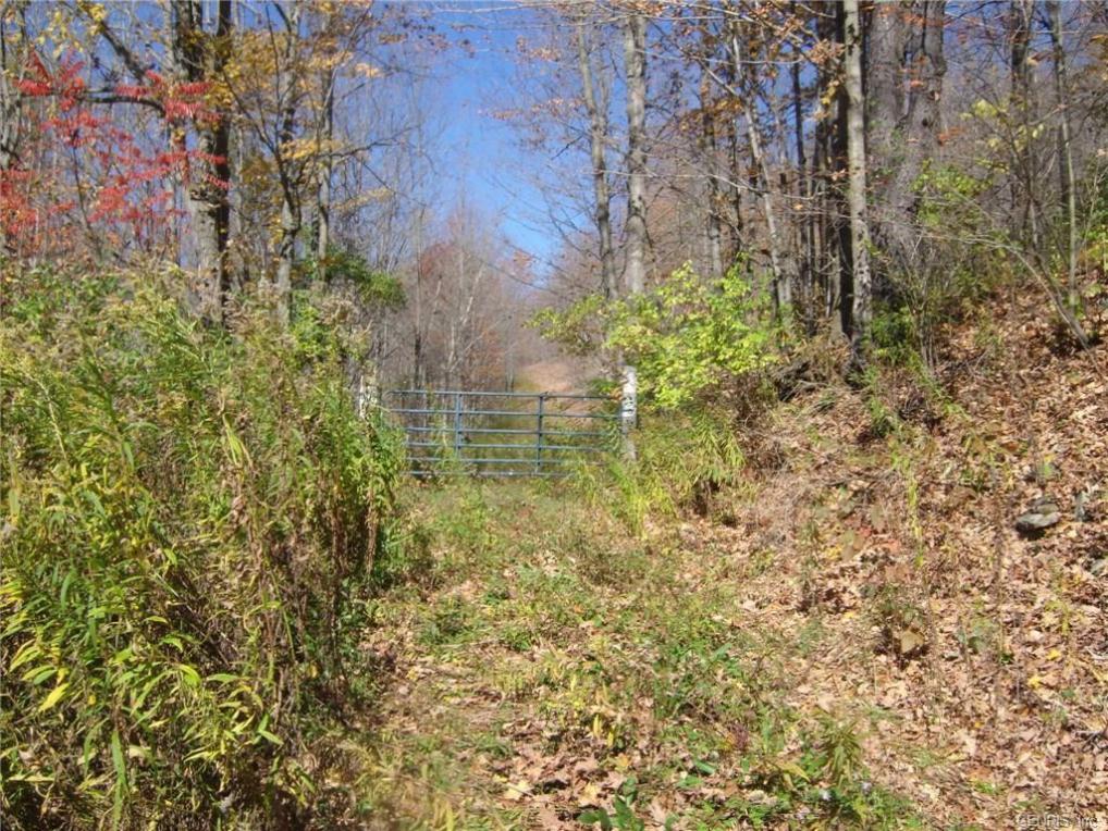 Indian Creek Road, Andover, NY 14806
