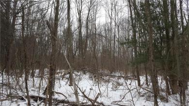 7180 Furnace Road, Ontario, NY 14519