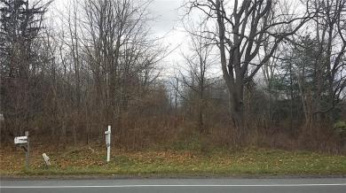 1497 Route 441, Walworth, NY 14568