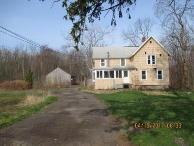 Photo of 7301 Bear Swamp Road, Williamson, NY 14589