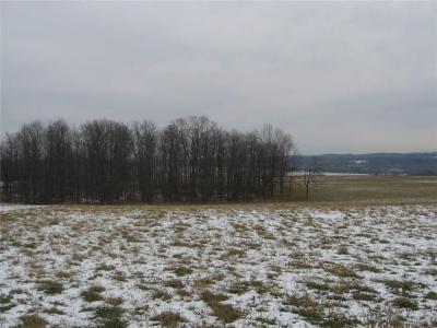 Photo of Federal Rd, Lot 1, Livonia, NY 14487