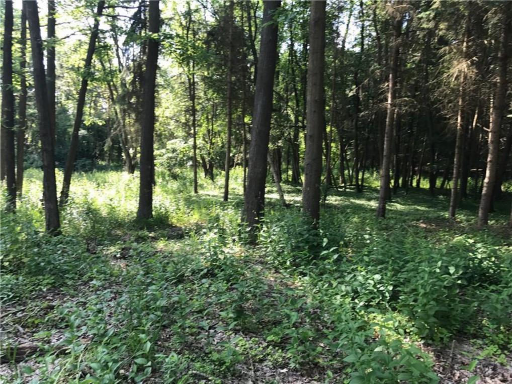 1529 Cranberry Pond, Victor, NY 14564