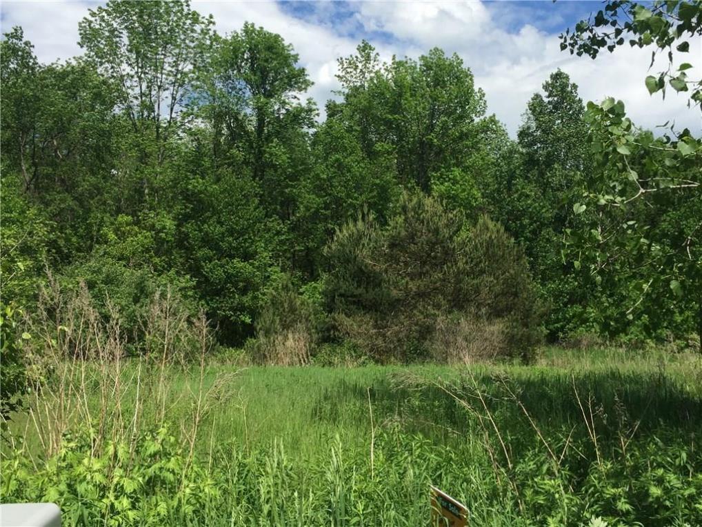 24 Trout Creek, Mendon, NY 14472