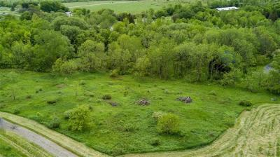 Photo of Pond Rd - Lot #1 Road, East Bloomfield, NY 14469