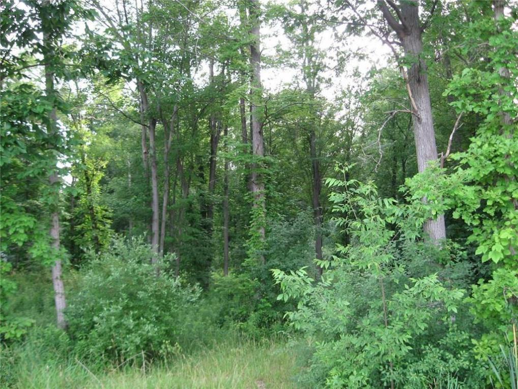 Elm Road, Geneseo, NY 14454