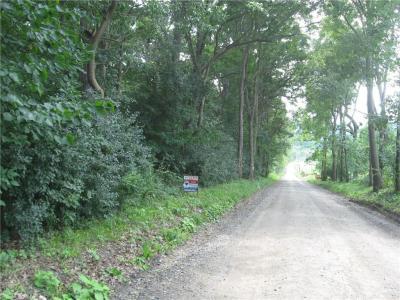 Photo of Swan Hill Rd Road, Groveland, NY 14462