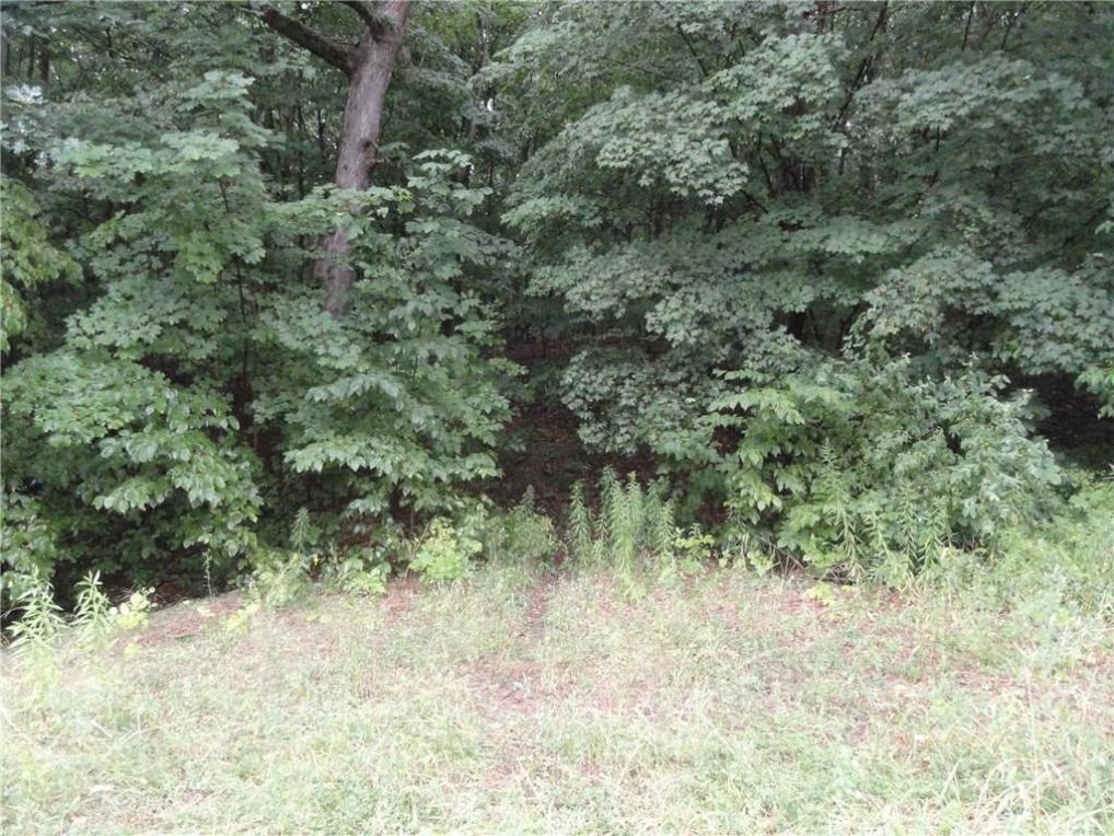 Marvin Hill Road, Springwater, NY 14560