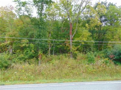 Photo of State Route 64, Bristol, NY 14424