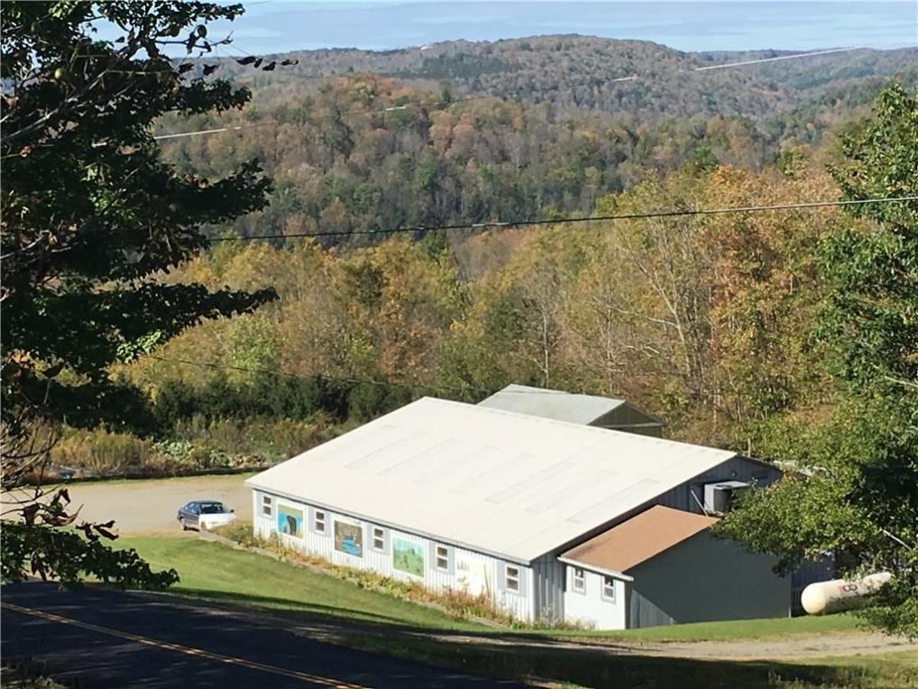 1922 County Route 63, Greenwood, NY 14839