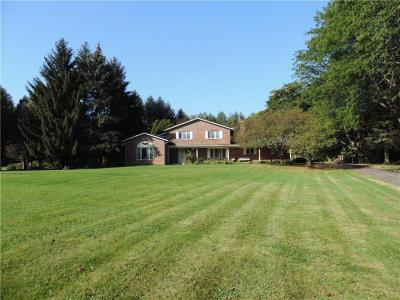 Photo of 245 Gallup Road, Sweden, NY 14559