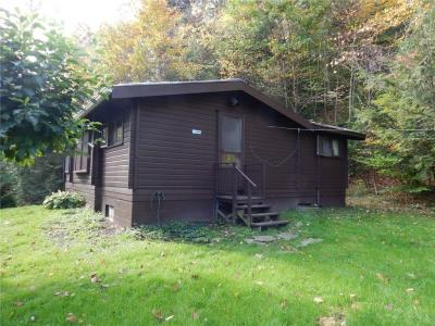 Photo of 8730 Lawrence Gull Road, Springwater, NY 14572