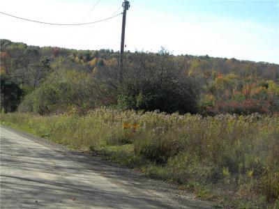 Photo of Wadsworth Hill Road, Ward, NY 14880