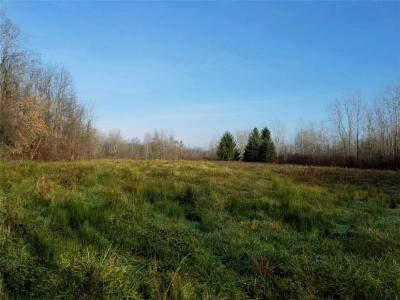 Photo of 1873 Paddy Lane, Ontario, NY 14519