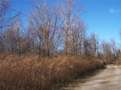 Photo of 12775 Scott Bluff Drive, Wolcott, NY 14590