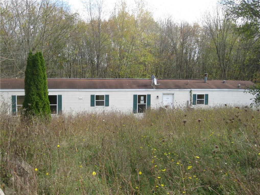 9666 Stickles Lane, Conquest, NY 13140