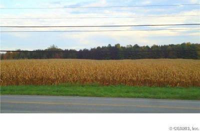 Photo of Salt Road, Webster, NY 14580