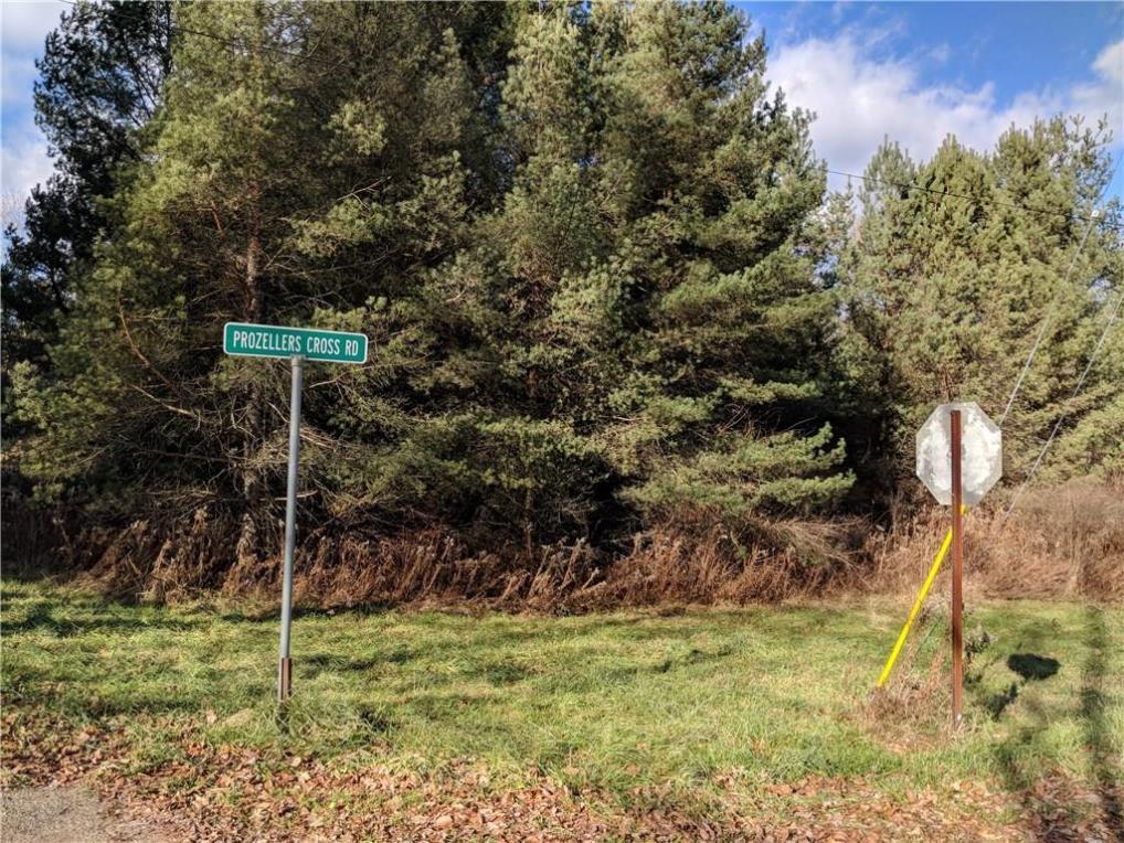 Prozeller Road, Allegany, NY 14706