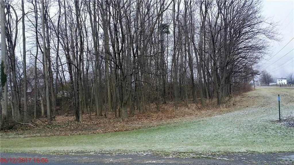 VL Telegraph Road, Ridgeway, NY 14103